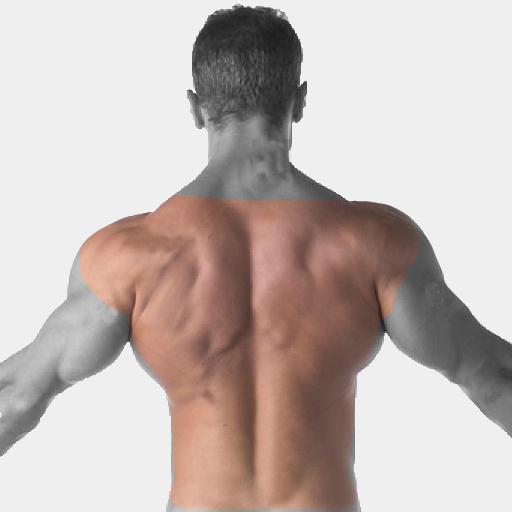 Back, shoulders Laser Hair Removal For Men