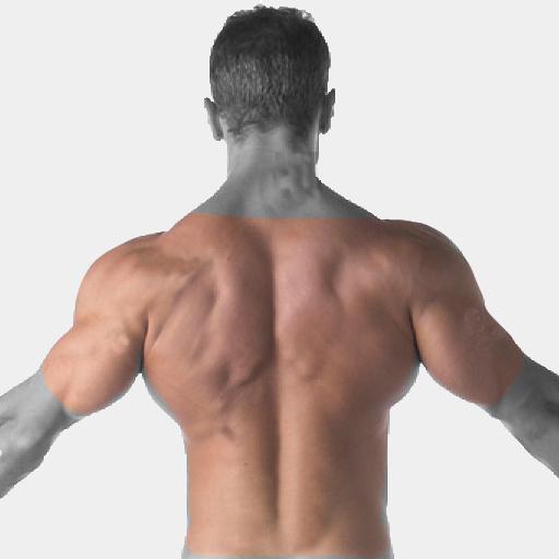 Back, shoulders, upper arms Laser Hair Removal For Men