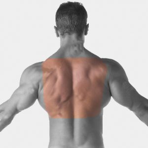 Upper or lower back Laser Hair Removal For Men